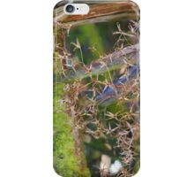 seedhead macro iPhone Case/Skin