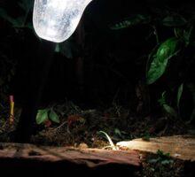 Garden Solar Light in the Dark Sticker