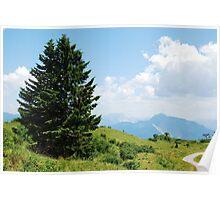 Landscape on Monte Zoncolan Poster