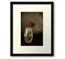 Mother's day, rose in glass Framed Print