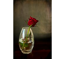 Mother's day, rose in glass Photographic Print