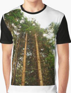Pine Tree Trunks Graphic T-Shirt