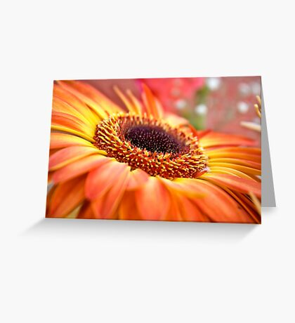 Special flower Greeting Card