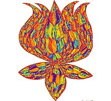 Buddhist Lotus Photographic Print