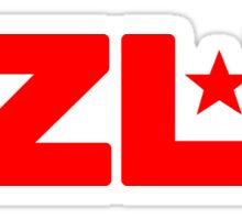 EZLN Red Star Sticker
