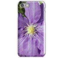 Spring Flower Series 43 iPhone Case/Skin