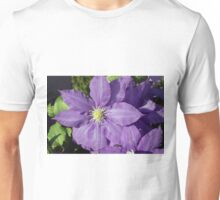 Spring Flower Series 43 Unisex T-Shirt