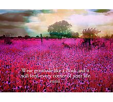 Rumi gratitude quote Photographic Print