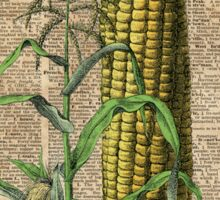 Corn  Vegetable Vintage Dictionary Art Sticker