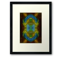 XXI - The Universe Framed Print