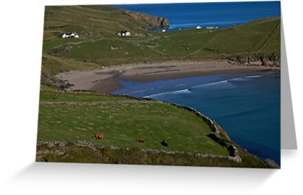 Traloar Beach, Muckross Head, Donegal by George Row