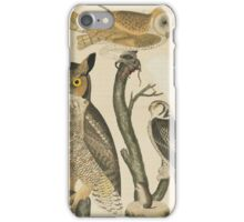 Alexander Wilson - American Ornithology Vol. VI, Plate 501808 - 1814 iPhone Case/Skin