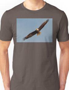 Bald Eagle in Flight Unisex T-Shirt