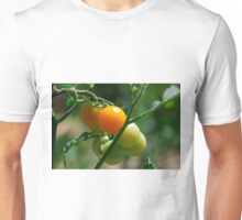 Orange Tomatoes Ripening on the Vine Unisex T-Shirt