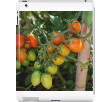 Date Tomatoes Ripening on Vine iPad Case/Skin