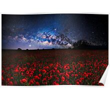 Poppies at night Poster
