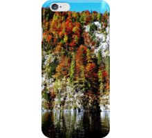 Autumn Leaves in Bavaria iPhone Case/Skin