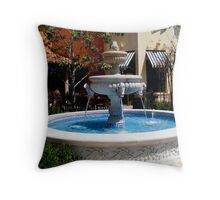 The Fountain ~ San Diego, California ~ USA (read poem) Throw Pillow