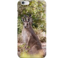 at home, Gladstone, South Australia iPhone Case/Skin