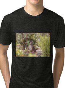 at home, Gladstone, South Australia Tri-blend T-Shirt
