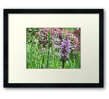Funky Floral Framed Print