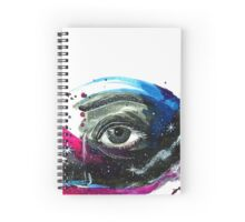 The eye of the Universe Spiral Notebook