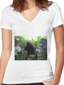 Igloo Of Stone Women's Fitted V-Neck T-Shirt