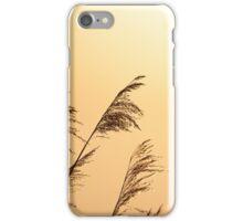 Golden Willows iPhone Case/Skin
