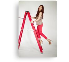 Photoshoot - Up The Ladder Canvas Print