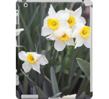 Spring Flower Series 38 iPad Case/Skin