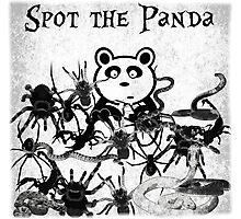 Spot the Panda Photographic Print