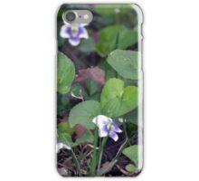 Spring Flower Series 35 iPhone Case/Skin