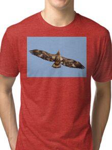 Immature Bald Eagle Tri-blend T-Shirt