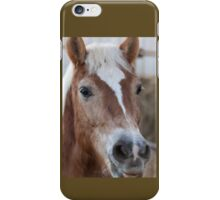 horse in the farm iPhone Case/Skin