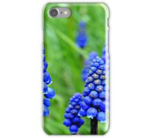 blue in the green  iPhone Case/Skin