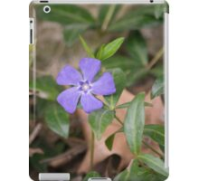 Spring Flower Series 28 iPad Case/Skin