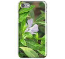 Spring Flower Series 27 iPhone Case/Skin