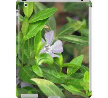 Spring Flower Series 27 iPad Case/Skin