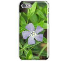 Spring Flower Series 26 iPhone Case/Skin