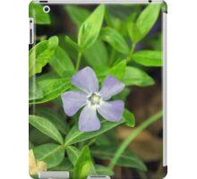 Spring Flower Series 26 iPad Case/Skin