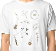 Seeds & Vegetables  Classic T-Shirt