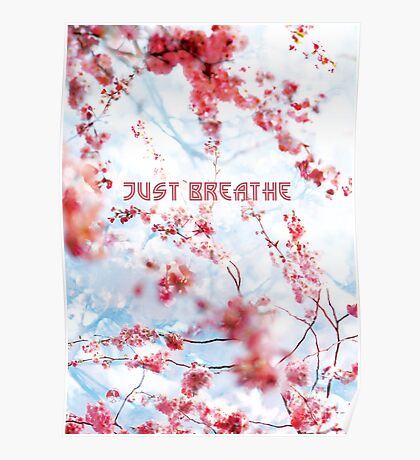 Just Breathe in the Cherry Blossoms  Poster