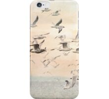 Flock of Seagulls iPhone Case/Skin