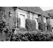 Ivy Covered Street Black and White Photographic Print