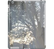 Mirrored Scrolls iPad Case/Skin