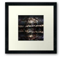 Space Leopard  Framed Print
