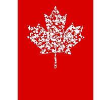 Canadian Pride 2 Photographic Print