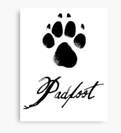 Padfoot Canvas Print