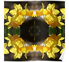 Daffodillys - In the Mirror Poster