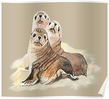 Cute Seal Watercolor Animal Art Poster